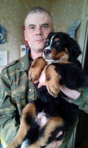Большой бернский зенненхунд. Консультация по воспитанию щенка и дрессировка.