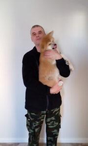 Акита-ину. Воспитательная дрессировка щенка.